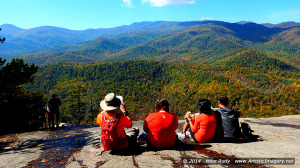 View From Looking Glass Rock, NC
